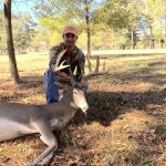 sedated buck in high fence property