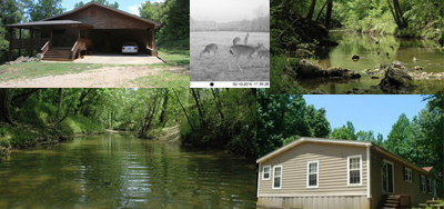Mussel Creek Photo Collage